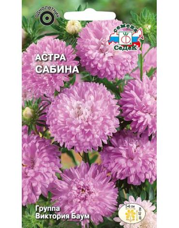 Астра Сабина (Седек)