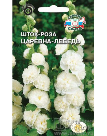Шток- роза Царевна лебедь (Седек)