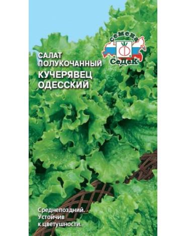 Салат Кучерявец Одесский  (кочан) (Седек)