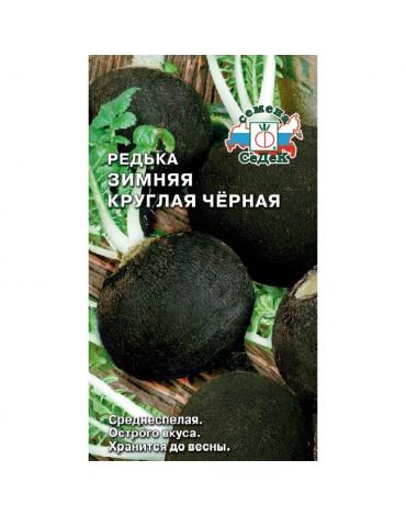 Редька Зимняя круглая чёрная (Седек)