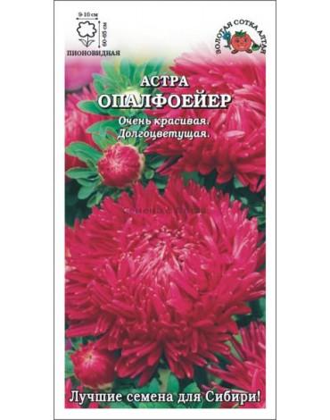 Астра Опалфоейер ярко-красная (Сотка)