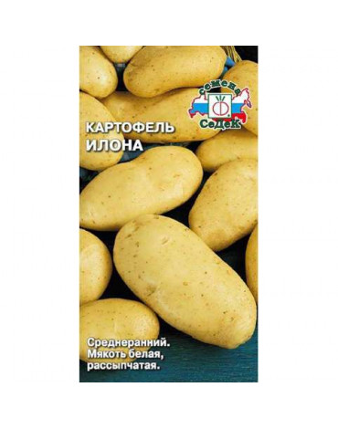 Картофель Илона (Седек)