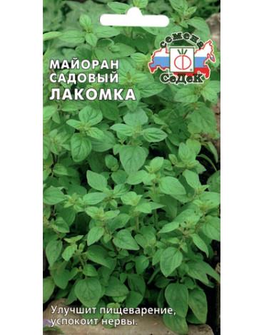 Майоран Лакомка садовый (Седек)