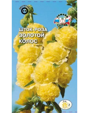 Шток - роза Золотой колос (Седек)