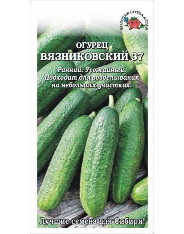 Огурец Вязниковский (Сотка) б/п