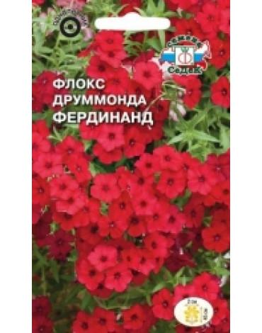Флокс Друммонда Фердинанд крупноцветковый(Седек)
