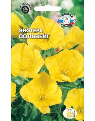 Энотера Сольвейг миссурийская жёлтая (Седек)