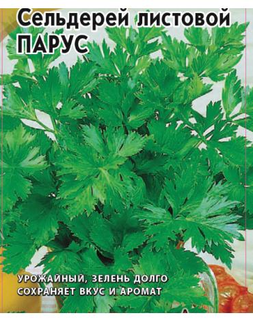 Сельдерей Парус (лист) (АМ) б/п