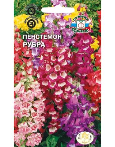 Пенстемон Рубра смесь (Седек)