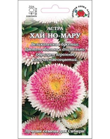 Астра Хай но мару бело-розов (Сотка)