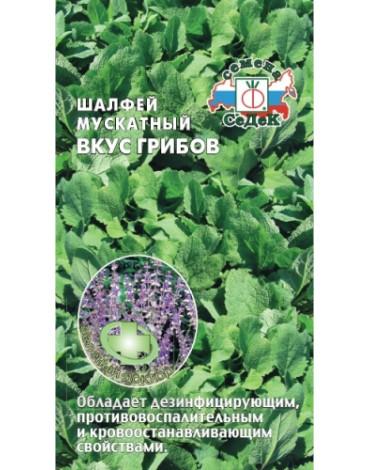 Шалфей мускатный Вкус грибов (Седек)