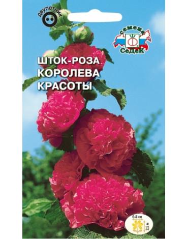Шток - роза Королева красоты (Седек)