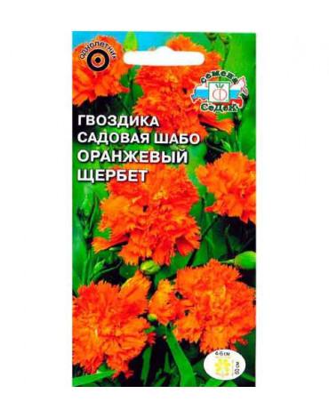 Гвоздика Оранжевый щербет (Седек)